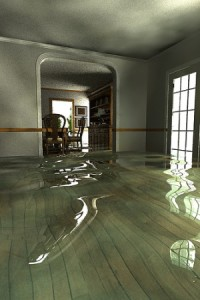 water damage st george
